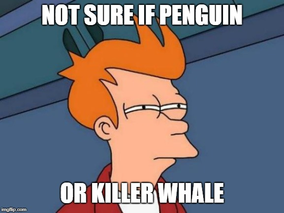 Futurama Fry Meme | NOT SURE IF PENGUIN OR KILLER WHALE | image tagged in memes,futurama fry | made w/ Imgflip meme maker