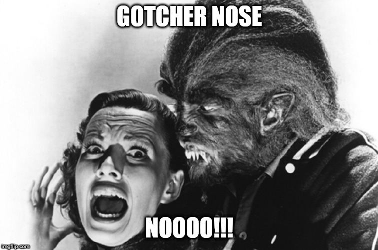 Teenage Werewolf No | GOTCHER NOSE NOOOO!!! | image tagged in landon,little joe no | made w/ Imgflip meme maker