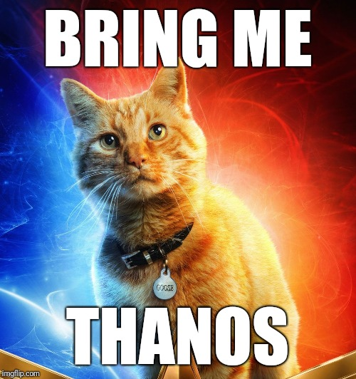 BRING ME THANOS | image tagged in goose,captain marvel,thanos | made w/ Imgflip meme maker