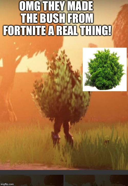 Fortnite bush |  OMG THEY MADE THE BUSH FROM FORTNITE A REAL THING! | image tagged in fortnite bush | made w/ Imgflip meme maker