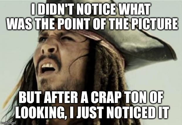 confused dafuq jack sparrow what | I DIDN'T NOTICE WHAT WAS THE POINT OF THE PICTURE BUT AFTER A CRAP TON OF LOOKING, I JUST NOTICED IT | image tagged in confused dafuq jack sparrow what | made w/ Imgflip meme maker
