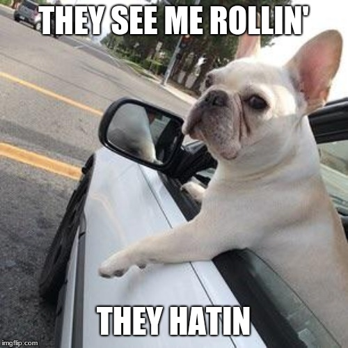 They see me rollin' | THEY SEE ME ROLLIN' THEY HATIN | image tagged in they see me rollin' | made w/ Imgflip meme maker