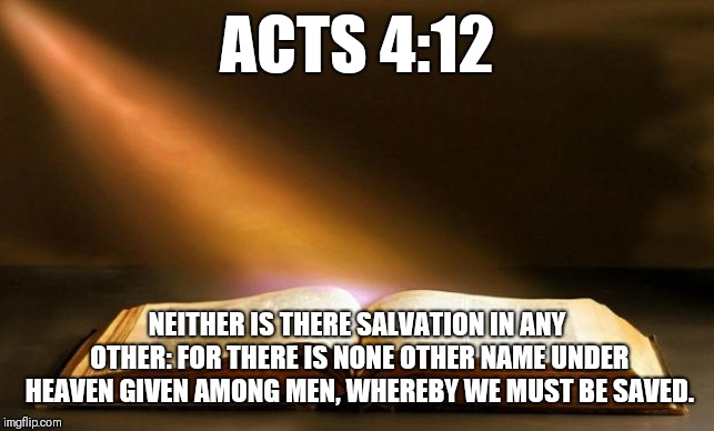 Bible  | ACTS 4:12 NEITHER IS THERE SALVATION IN ANY OTHER: FOR THERE IS NONE OTHER NAME UNDER HEAVEN GIVEN AMONG MEN, WHEREBY WE MUST BE SAVED. | image tagged in bible | made w/ Imgflip meme maker