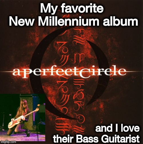 I am strangely not that crazy about Tool | My favorite New Millennium album and I love their Bass Guitarist | image tagged in rock music,new,millennium falcon,hot,all about that bass | made w/ Imgflip meme maker