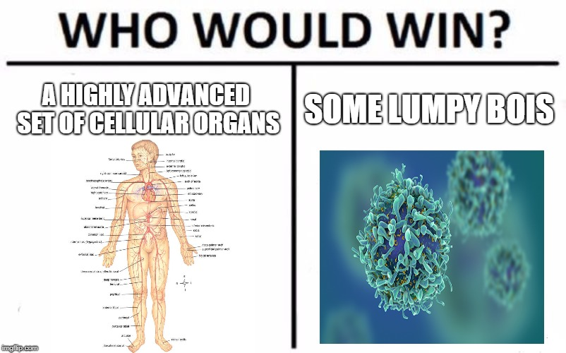 Who Would Win? Meme | A HIGHLY ADVANCED SET OF CELLULAR ORGANS SOME LUMPY BOIS | image tagged in memes,who would win | made w/ Imgflip meme maker
