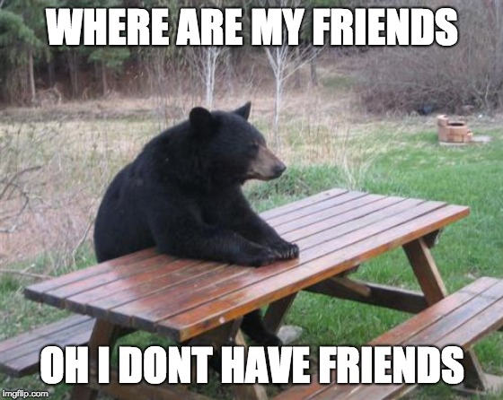 Bad Luck Bear | WHERE ARE MY FRIENDS OH I DONT HAVE FRIENDS | image tagged in memes,bad luck bear | made w/ Imgflip meme maker