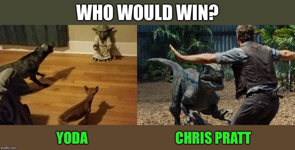 A different kind of fight club. | WHO WOULD WIN? YODA                                 CHRIS PRATT | image tagged in yoda,jurrasic park,who would win,memes,funny | made w/ Imgflip meme maker