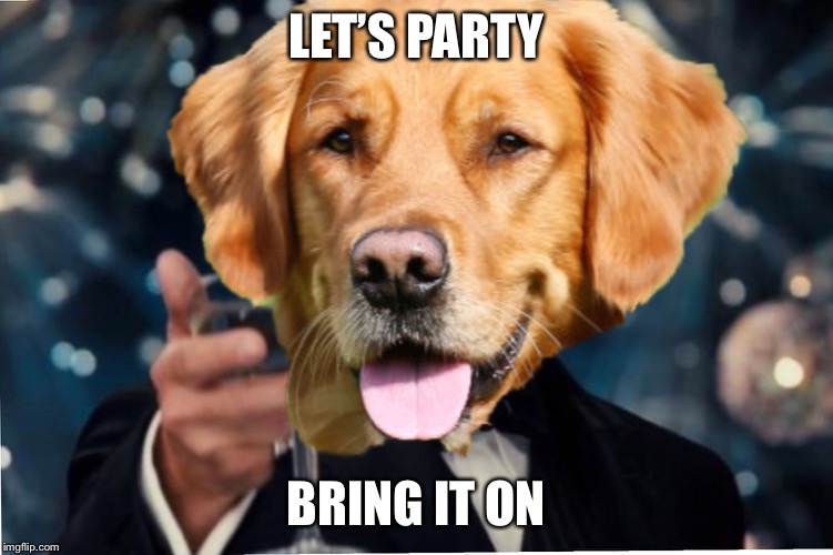Dog Cheers! | LET'S PARTY BRING IT ON | image tagged in dog cheers | made w/ Imgflip meme maker