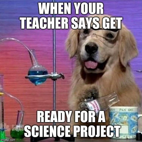 I Have No Idea What I Am Doing Dog | WHEN YOUR TEACHER SAYS GET READY FOR A SCIENCE PROJECT | image tagged in memes,i have no idea what i am doing dog | made w/ Imgflip meme maker