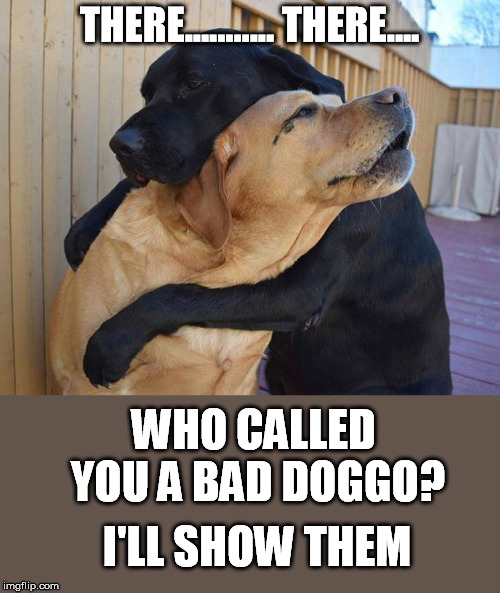 THERE........... THERE.... WHO CALLED YOU A BAD DOGGO? I'LL SHOW THEM | made w/ Imgflip meme maker