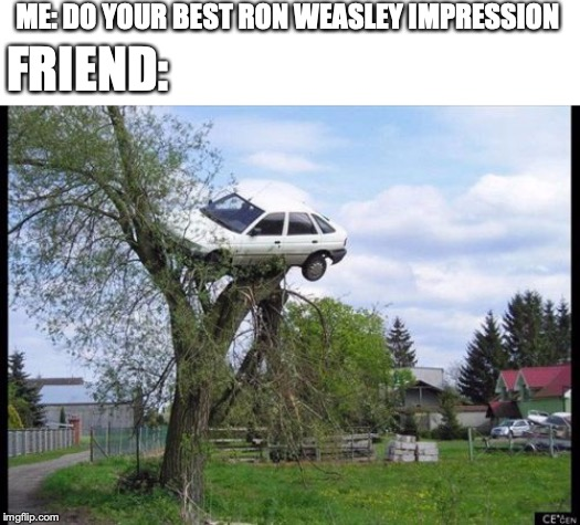 Secure Parking Meme | ME: DO YOUR BEST RON WEASLEY IMPRESSION FRIEND: | image tagged in memes,secure parking | made w/ Imgflip meme maker