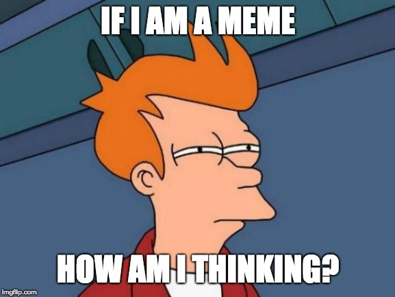 Futurama Fry | IF I AM A MEME HOW AM I THINKING? | image tagged in memes,futurama fry | made w/ Imgflip meme maker