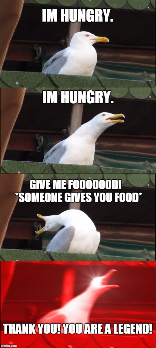 Inhaling Seagull Meme | IM HUNGRY. IM HUNGRY. GIVE ME FOOOOOOD!   *SOMEONE GIVES YOU FOOD* THANK YOU! YOU ARE A LEGEND! | image tagged in memes,inhaling seagull | made w/ Imgflip meme maker