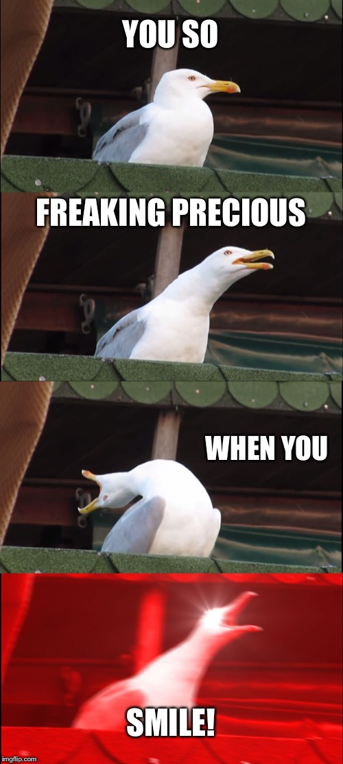 Inhaling Seagull Meme | YOU SO FREAKING PRECIOUS WHEN YOU SMILE! | image tagged in memes,inhaling seagull | made w/ Imgflip meme maker