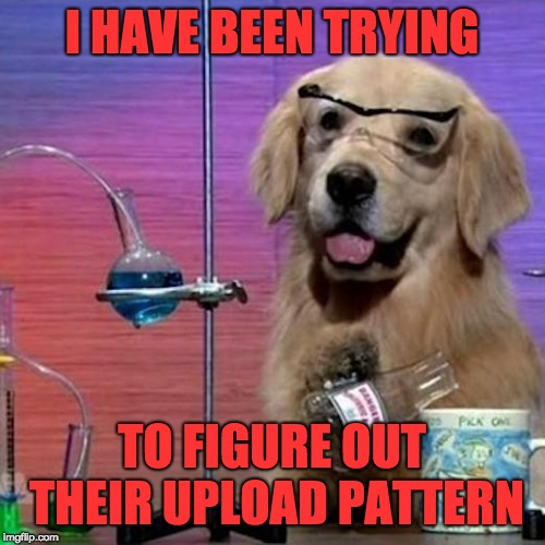 I Have No Idea What I Am Doing Dog Meme | I HAVE BEEN TRYING TO FIGURE OUT THEIR UPLOAD PATTERN | image tagged in memes,i have no idea what i am doing dog | made w/ Imgflip meme maker