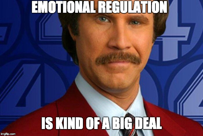Kind of a big deal |  EMOTIONAL REGULATION; IS KIND OF A BIG DEAL | image tagged in kind of a big deal | made w/ Imgflip meme maker