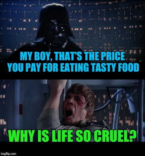 Star Wars No Meme | MY BOY, THAT'S THE PRICE YOU PAY FOR EATING TASTY FOOD WHY IS LIFE SO CRUEL? | image tagged in memes,star wars no | made w/ Imgflip meme maker