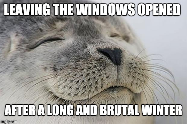 Satisfied Seal Meme | LEAVING THE WINDOWS OPENED AFTER A LONG AND BRUTAL WINTER | image tagged in memes,satisfied seal,AdviceAnimals | made w/ Imgflip meme maker