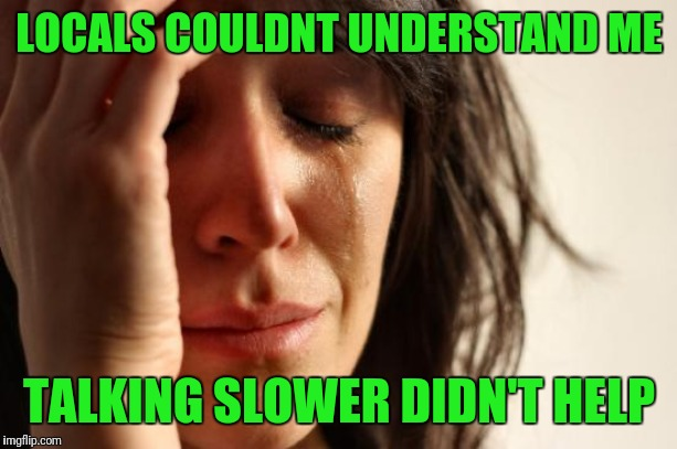 Do You Understand the Words That Are Coming Out My Mouth | LOCALS COULDNT UNDERSTAND ME TALKING SLOWER DIDN'T HELP | image tagged in memes,first world problems,lost in translation | made w/ Imgflip meme maker