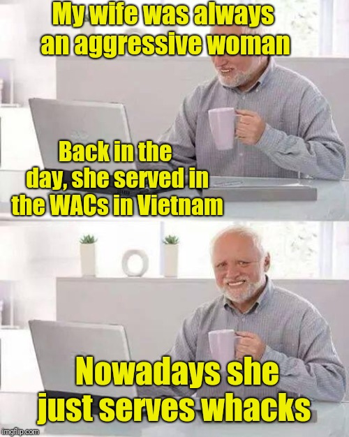 Keep on hiding it, Harold. (WACs is the Women's Army Corps)  |  My wife was always an aggressive woman; Back in the day, she served in the WACs in Vietnam; Nowadays she just serves whacks | image tagged in memes,hide the pain harold,vintage husband and wife,i want you for us army,vietnam,thoroughly modern marriage | made w/ Imgflip meme maker
