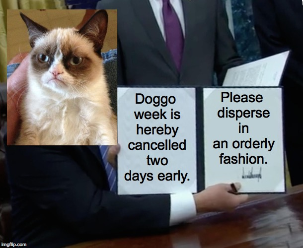 Grump Bill Signing | Doggo week is hereby cancelled two days early. Please disperse in an orderly fashion. | image tagged in memes,trump bill signing,grumpy cat,doggo week,gwan get outta here,go home beat it scram | made w/ Imgflip meme maker