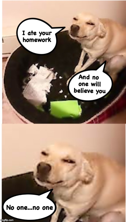 No-Go Doggo | I ate your homework And no one will believe you No one...no one | image tagged in doggo week,homework,destroy | made w/ Imgflip meme maker