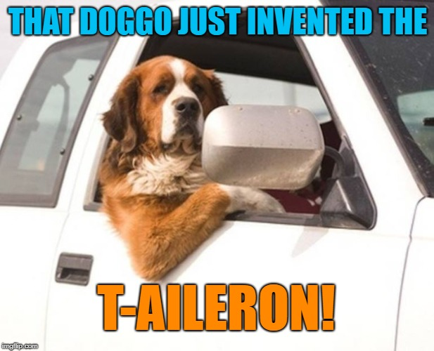 Proud Dog | THAT DOGGO JUST INVENTED THE T-AILERON! | image tagged in proud dog | made w/ Imgflip meme maker