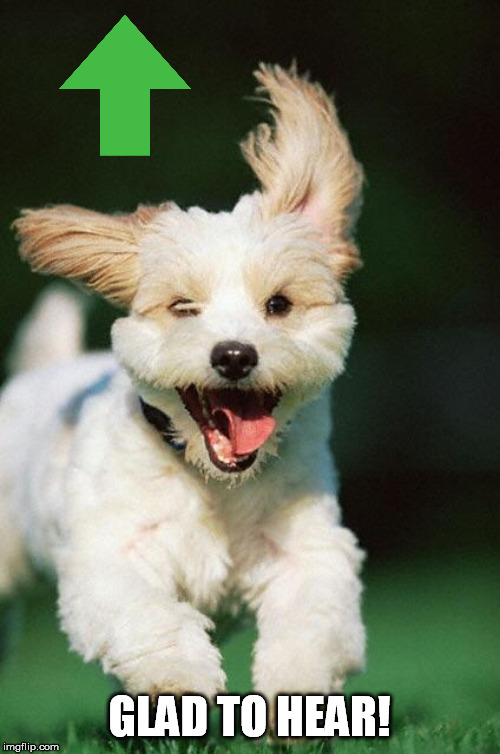 Happy dog | GLAD TO HEAR! | image tagged in happy dog | made w/ Imgflip meme maker