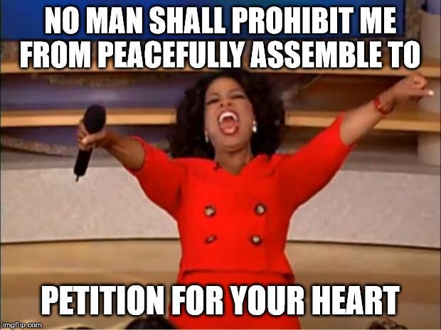 Oprah You Get A Meme | NO MAN SHALL PROHIBIT ME FROM PEACEFULLY ASSEMBLE TO PETITION FOR YOUR HEART | image tagged in memes,oprah you get a | made w/ Imgflip meme maker
