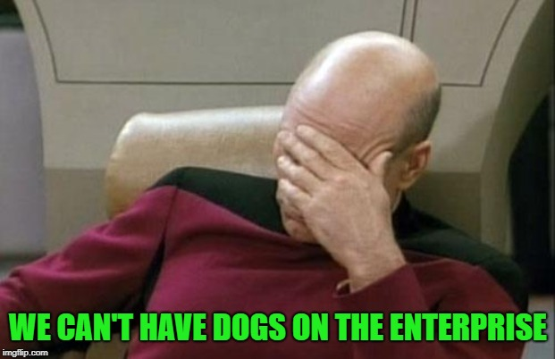 Captain Picard Facepalm Meme | WE CAN'T HAVE DOGS ON THE ENTERPRISE | image tagged in memes,captain picard facepalm | made w/ Imgflip meme maker