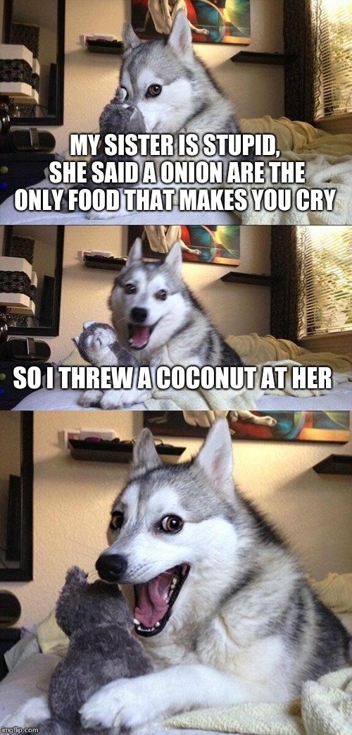 Bad Pun Dog Meme | MY SISTER IS STUPID, SHE SAID A ONION ARE THE ONLY FOOD THAT MAKES YOU CRY SO I THREW A COCONUT AT HER | image tagged in memes,bad pun dog | made w/ Imgflip meme maker