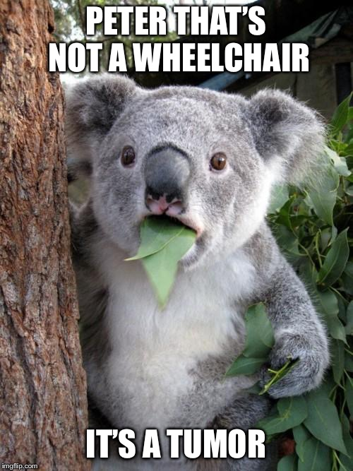 Surprised Koala Meme | PETER THAT'S NOT A WHEELCHAIR IT'S A TUMOR | image tagged in memes,surprised koala | made w/ Imgflip meme maker