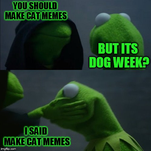 Evil Kermit Slap |  YOU SHOULD MAKE CAT MEMES; BUT ITS DOG WEEK? I SAID MAKE CAT MEMES | image tagged in evil kermit slap,doggo week,dogs,kermit,evil kermit,cats | made w/ Imgflip meme maker