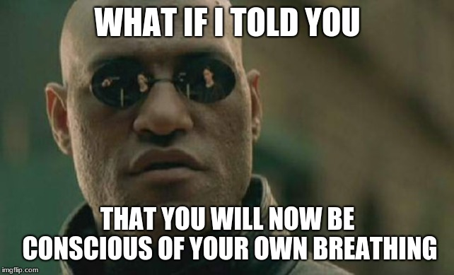 #prankd | WHAT IF I TOLD YOU THAT YOU WILL NOW BE CONSCIOUS OF YOUR OWN BREATHING | image tagged in memes,matrix morpheus | made w/ Imgflip meme maker
