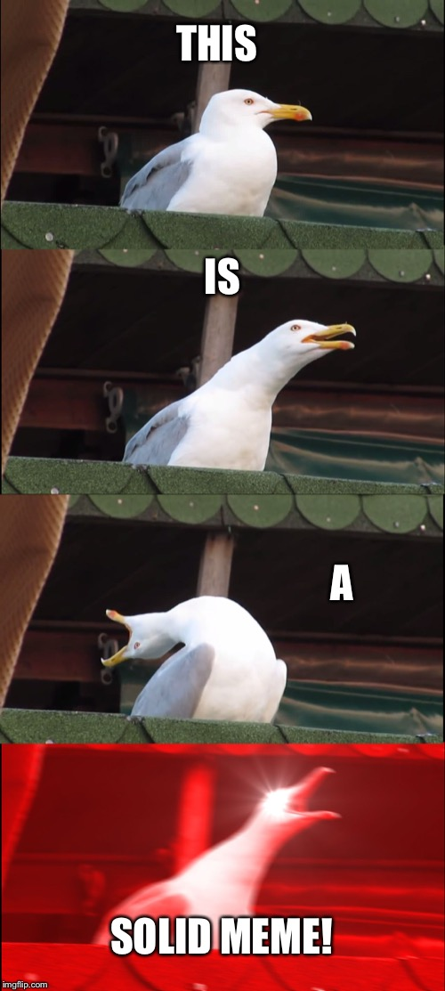 Inhaling Seagull Meme | THIS IS A SOLID MEME! | image tagged in memes,inhaling seagull | made w/ Imgflip meme maker