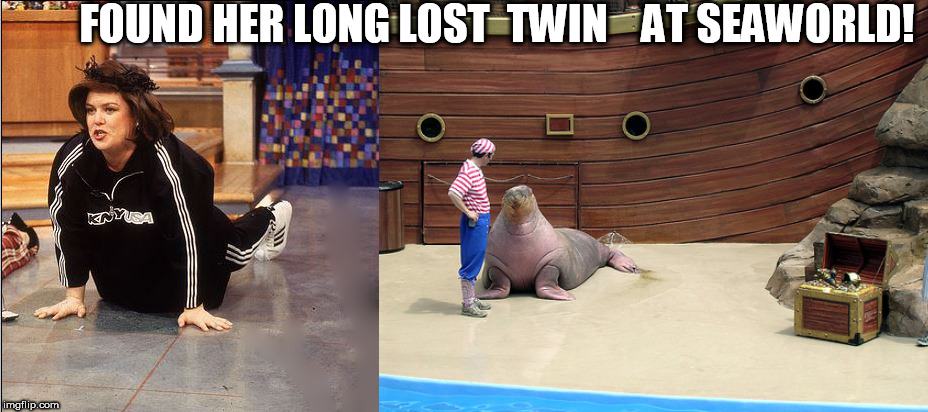 I must say there's a STRIKING RESEMBLANCE!  | FOUND HER LONG LOST  TWIN    AT SEAWORLD! | image tagged in rosie o'donnell,walrus,flopped on the floor,long lost twin  found,seaworld | made w/ Imgflip meme maker