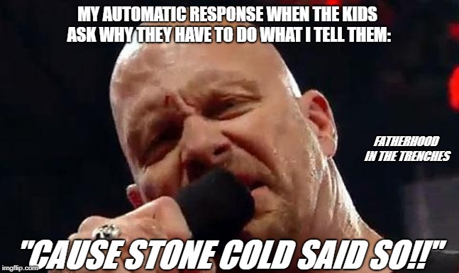 "Cause Stone Cold Said So |  MY AUTOMATIC RESPONSE WHEN THE KIDS ASK WHY THEY HAVE TO DO WHAT I TELL THEM:; FATHERHOOD IN THE TRENCHES; ""CAUSE STONE COLD SAID SO!!"" 