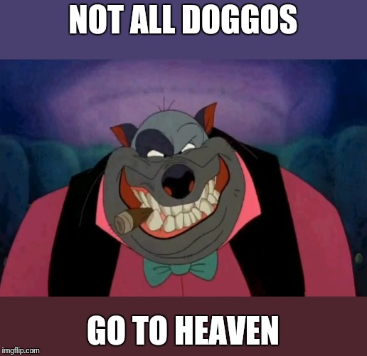 NOT ALL DOGGOS GO TO HEAVEN | image tagged in funny memes | made w/ Imgflip meme maker