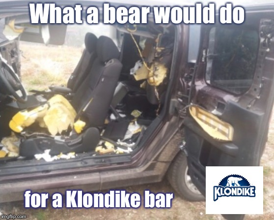 What would YOU do for a Klondike bar? | What a bear would do for a Klondike bar | image tagged in bear,tear up car interior,klondike bar,funny memes | made w/ Imgflip meme maker