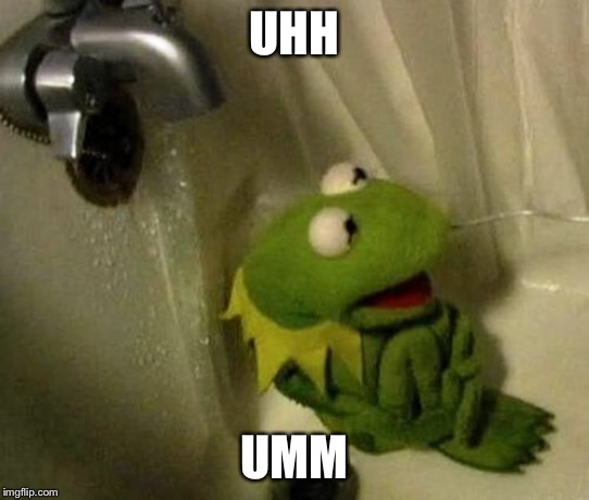 Kermit on Shower | UHH UMM | image tagged in kermit on shower | made w/ Imgflip meme maker