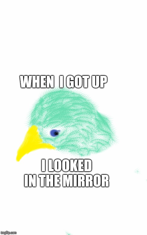 WHEN  I GOT UP I LOOKED IN THE MIRROR | image tagged in imgflip | made w/ Imgflip meme maker