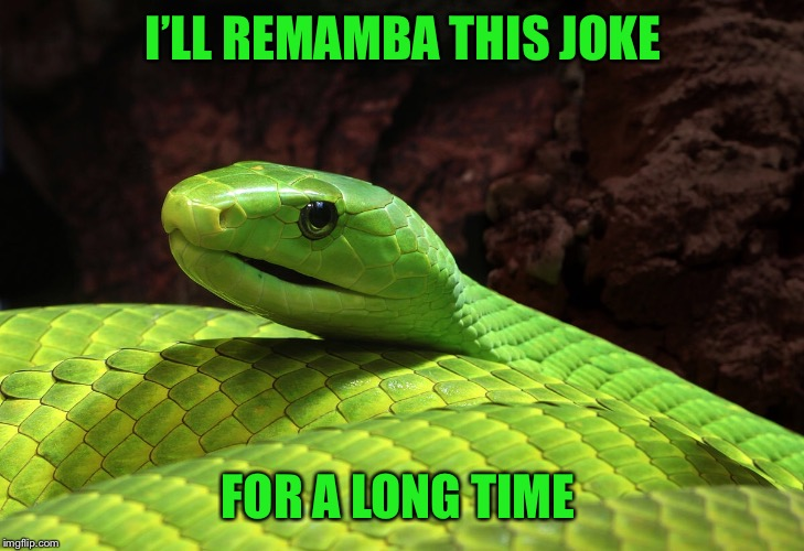 I'LL REMAMBA THIS JOKE FOR A LONG TIME | made w/ Imgflip meme maker