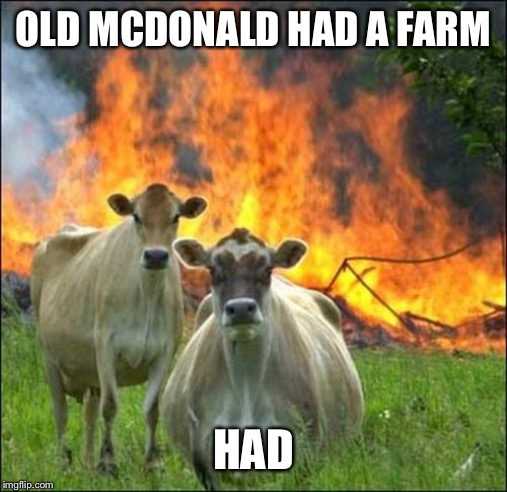 Evil Cows | OLD MCDONALD HAD A FARM HAD | image tagged in memes,evil cows | made w/ Imgflip meme maker