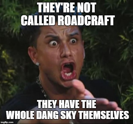DJ Pauly D Meme | THEY'RE NOT CALLED ROADCRAFT THEY HAVE THE WHOLE DANG SKY THEMSELVES | image tagged in memes,dj pauly d | made w/ Imgflip meme maker
