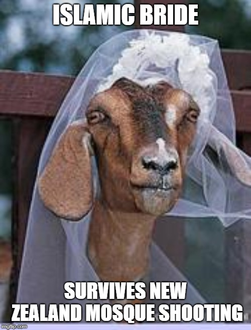 muslim goat | ISLAMIC BRIDE SURVIVES NEW ZEALAND MOSQUE SHOOTING | image tagged in muslim goat | made w/ Imgflip meme maker