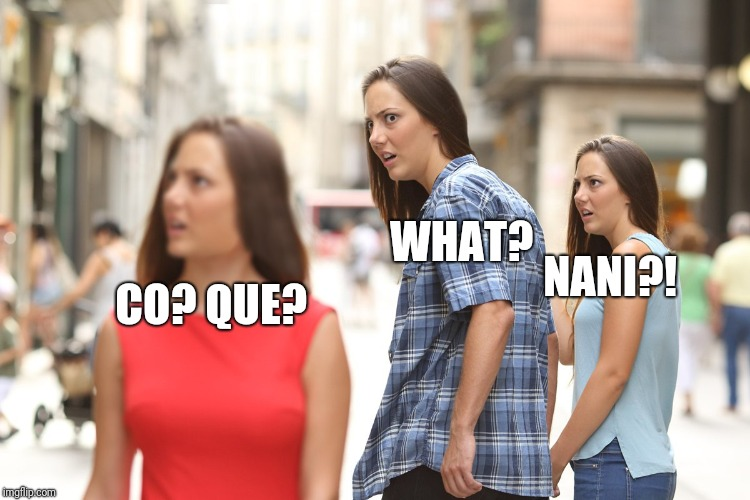 I have no idea why I'm saying what in 4 languages (Including English)  | WHAT? CO? QUE? NANI?! | image tagged in distracted boyfriend paranoia,co que what nani | made w/ Imgflip meme maker
