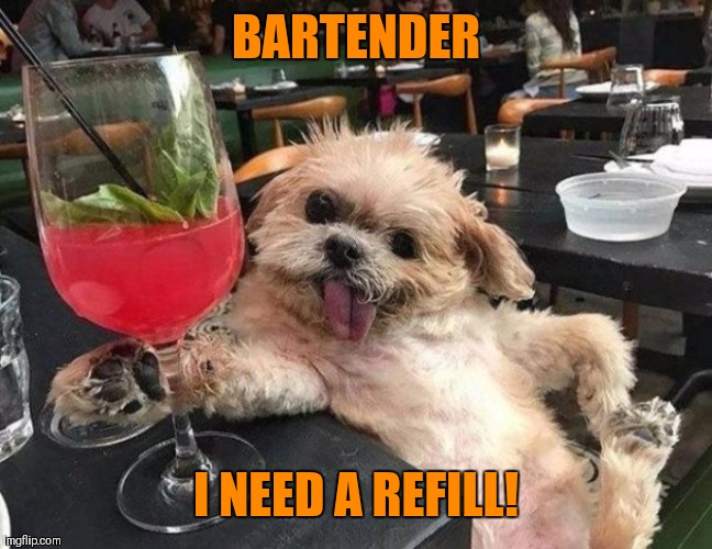 Doggo Week March 10-16 (A Blaze_the_Blaziken and 1forpiece event) | BARTENDER I NEED A REFILL! | image tagged in memes,funny,doggo week,drunk dog,1forpeace,blaze the blaziken | made w/ Imgflip meme maker