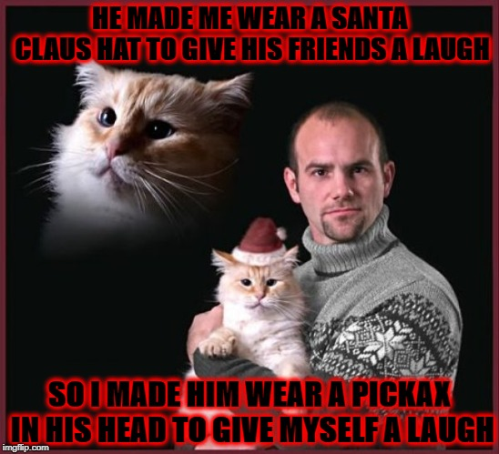 HE MADE ME WEAR A SANTA CLAUS HAT TO GIVE HIS FRIENDS A LAUGH SO I MADE HIM WEAR A PICKAX IN HIS HEAD TO GIVE MYSELF A LAUGH | image tagged in vengeance cat | made w/ Imgflip meme maker