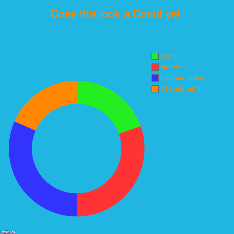 Does this look a Donut yet | if I could eat it, I wonder hmmm, NO!!!!!!!, Yes!!!! | image tagged in charts,donut charts | made w/ Imgflip chart maker
