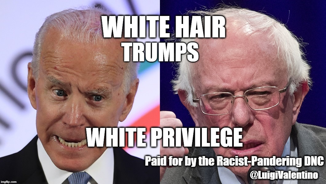 Bernie 2020 | WHITE HAIR @LuigiValentino Paid for by the Racist-Pandering DNC TRUMPS WHITE PRIVILEGE | image tagged in bernie,sanders,joe,biden,2020,white privilege | made w/ Imgflip meme maker